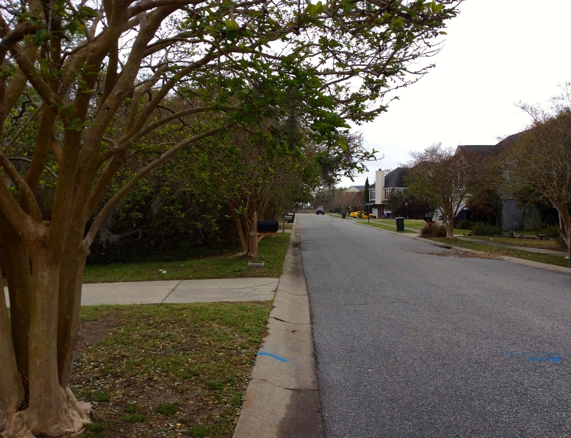 2019 Needlegrass Lane Charleston, SC 29412