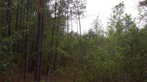 131 Hendorrich Trail, Huger, SC 29450