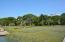 16 Hammocks Way, Edisto Island, SC 29438