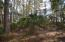 9805 Two Pines Road, McClellanville, SC 29458