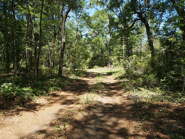 None Lots For Sale - 2952 Bohicket, Johns Island, SC - 35