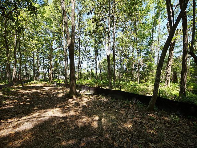 None Lots For Sale - 2952 Bohicket, Johns Island, SC - 24