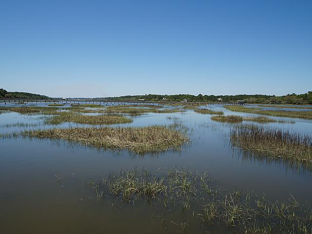 None Lots For Sale - 2952 Bohicket, Johns Island, SC - 13