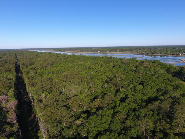 None Lots For Sale - 2952 Bohicket, Johns Island, SC - 50