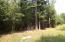 0 Griffith Acres Road, Cottageville, SC 29435