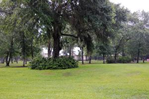 The front yard of the home.