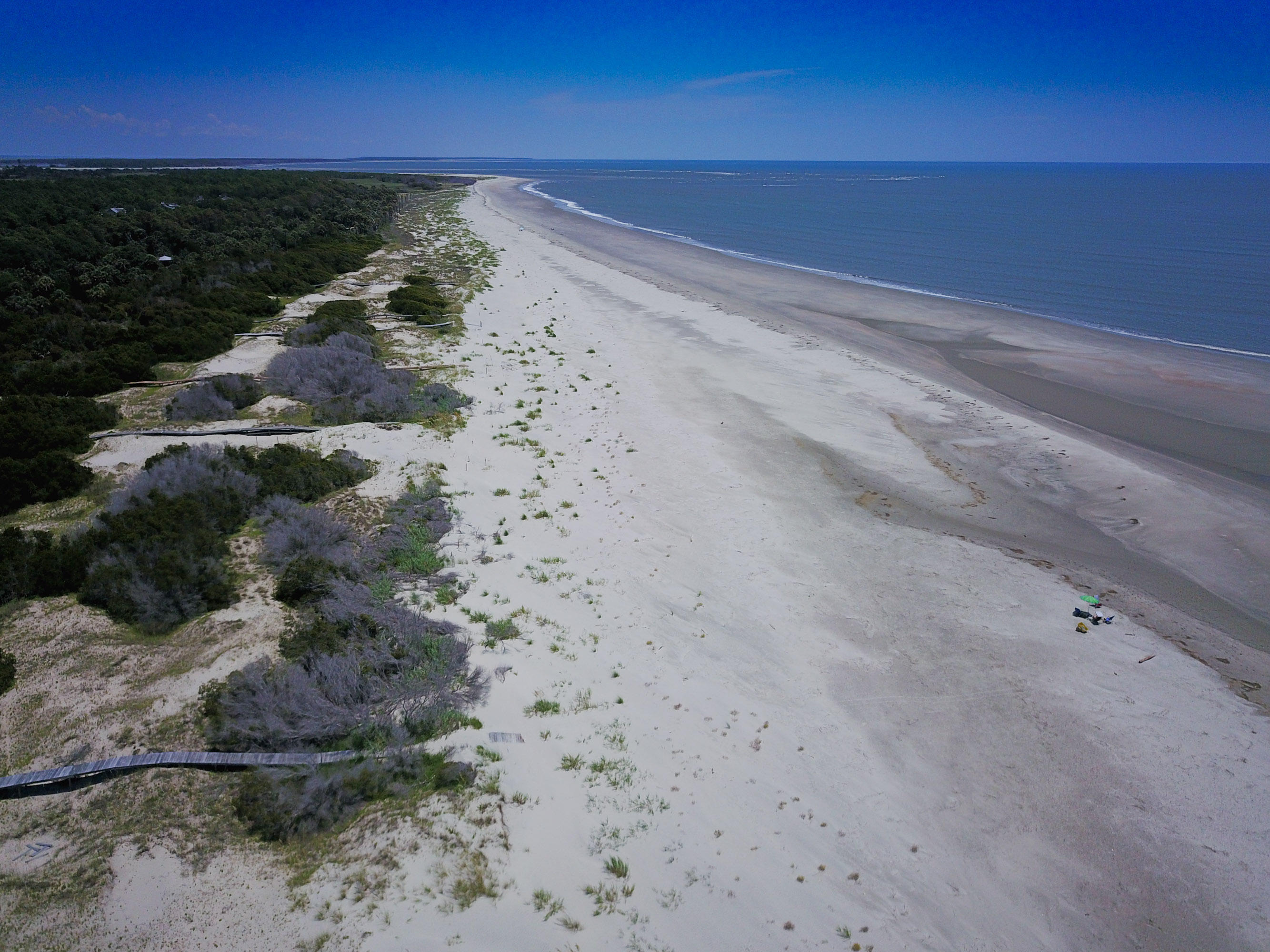 None Lots For Sale - 275 Pelican Flight, Dewees Island, SC - 22