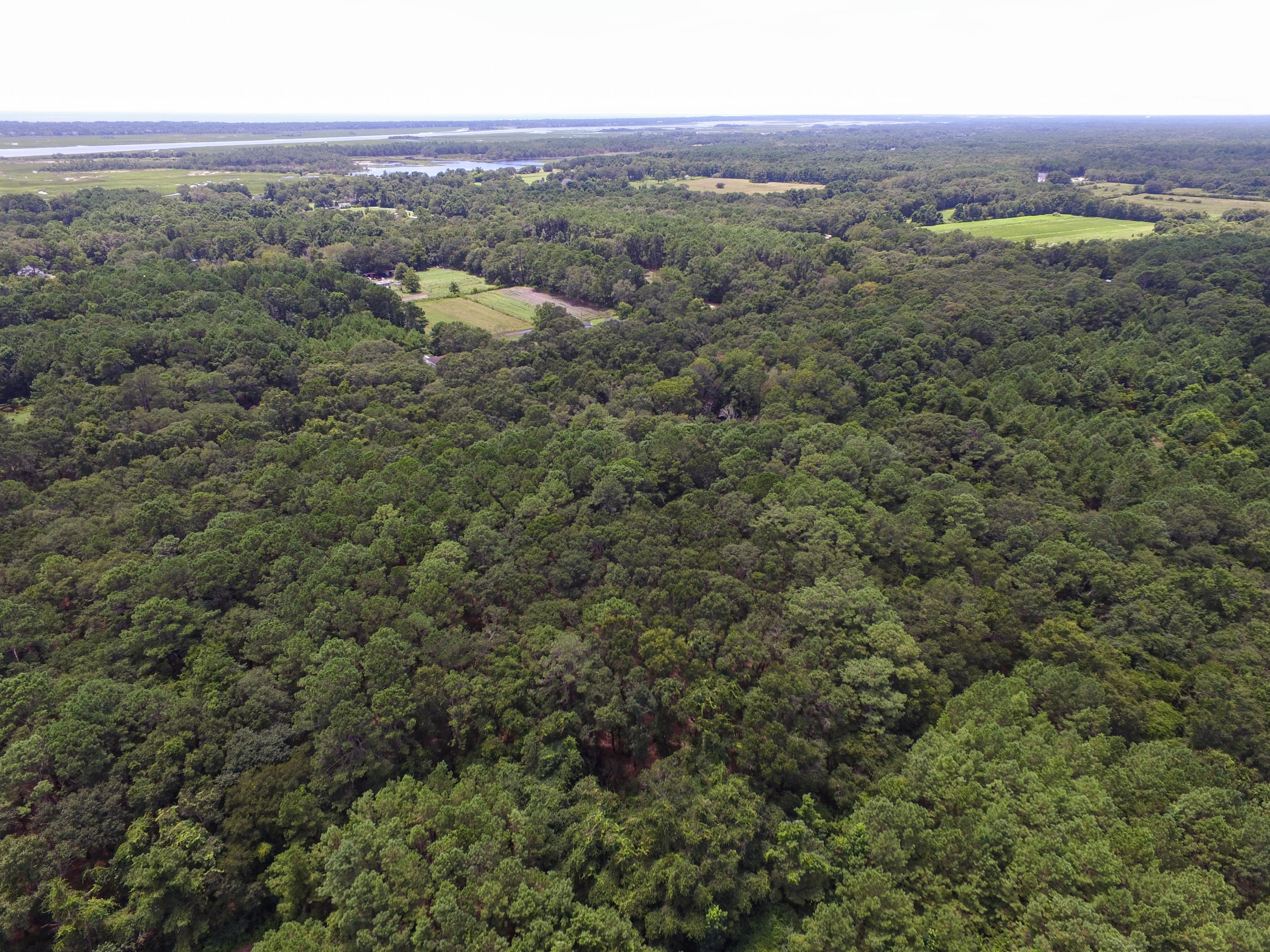 None Lots For Sale - 2630 Bryans Dairy, Johns Island, SC - 28