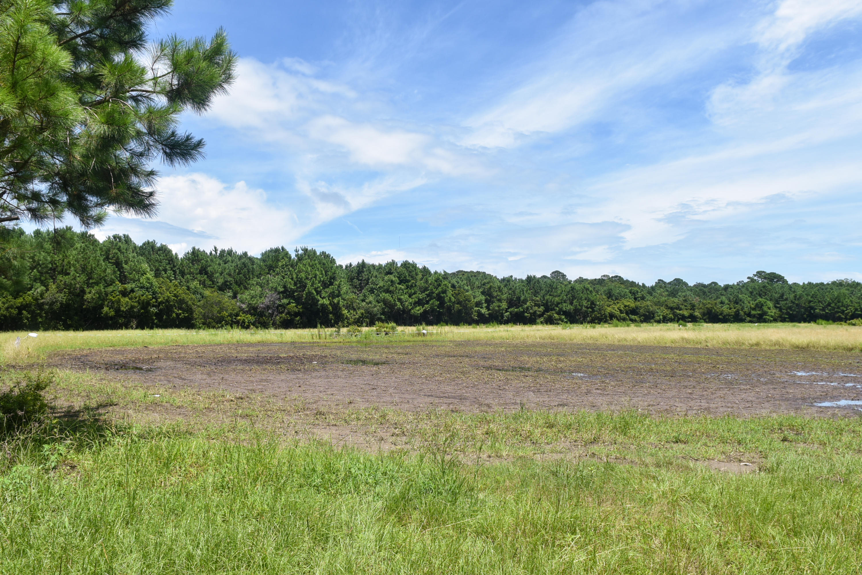 None Lots For Sale - 2630 Bryans Dairy, Johns Island, SC - 9