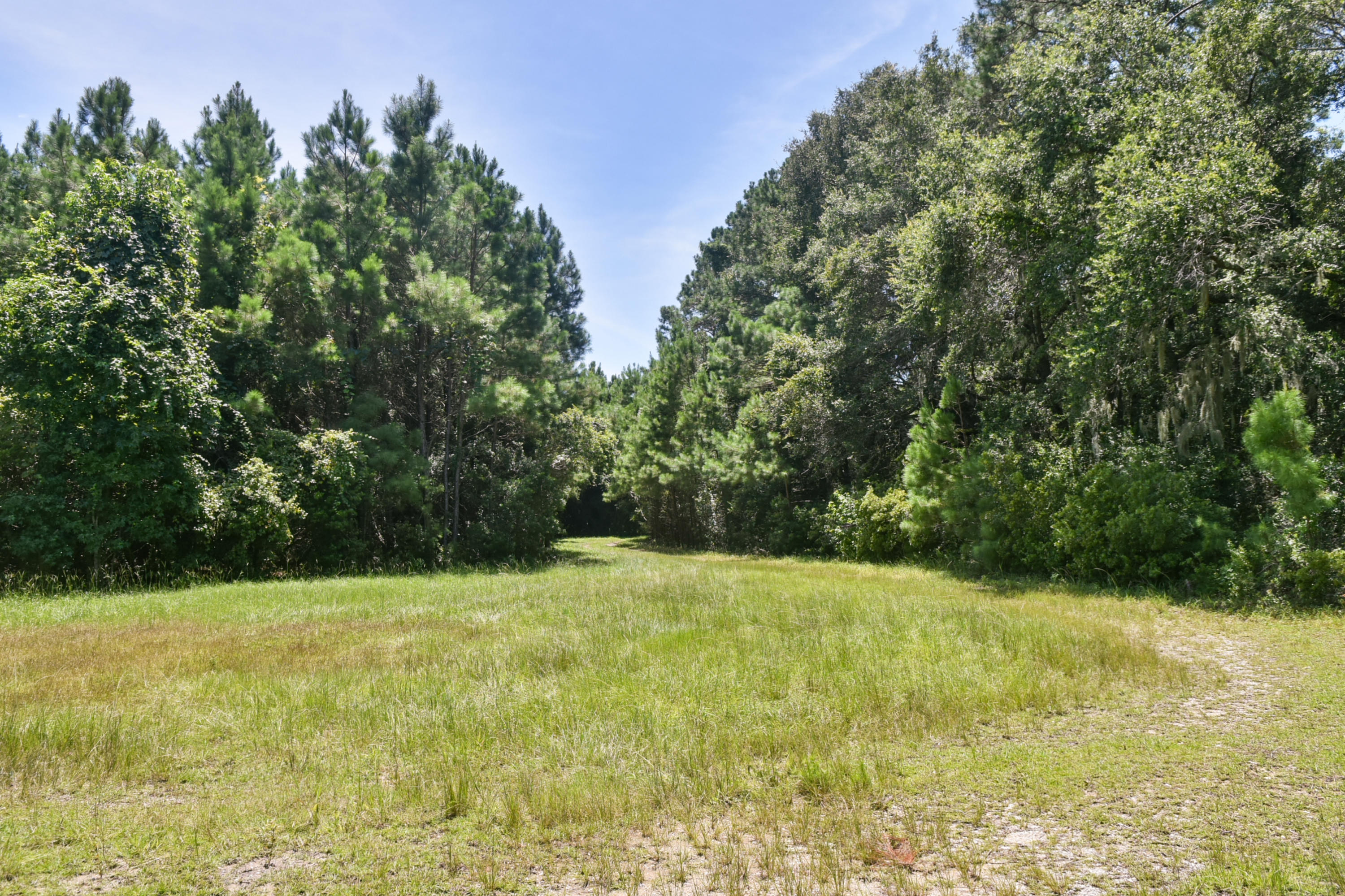 None Lots For Sale - 2630 Bryans Dairy, Johns Island, SC - 7