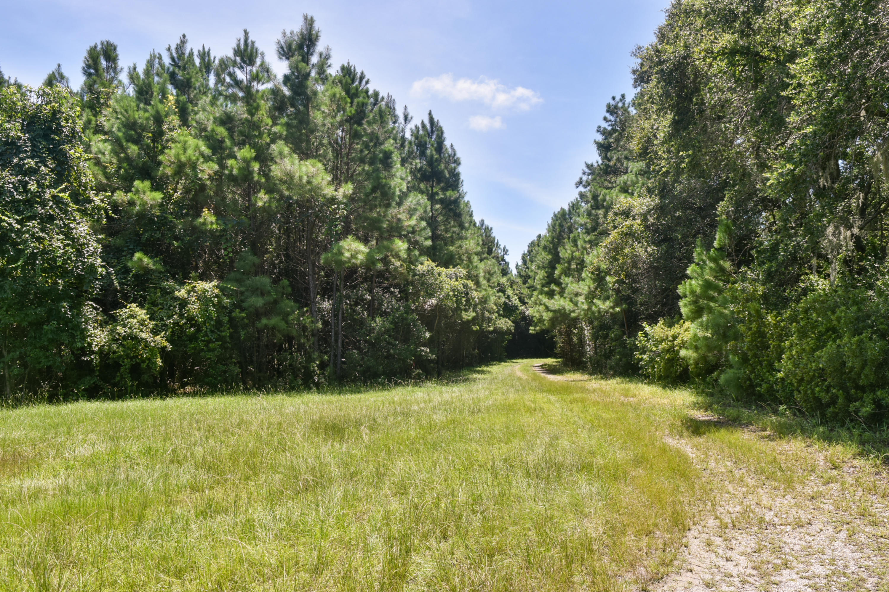 None Lots For Sale - 2630 Bryans Dairy, Johns Island, SC - 5