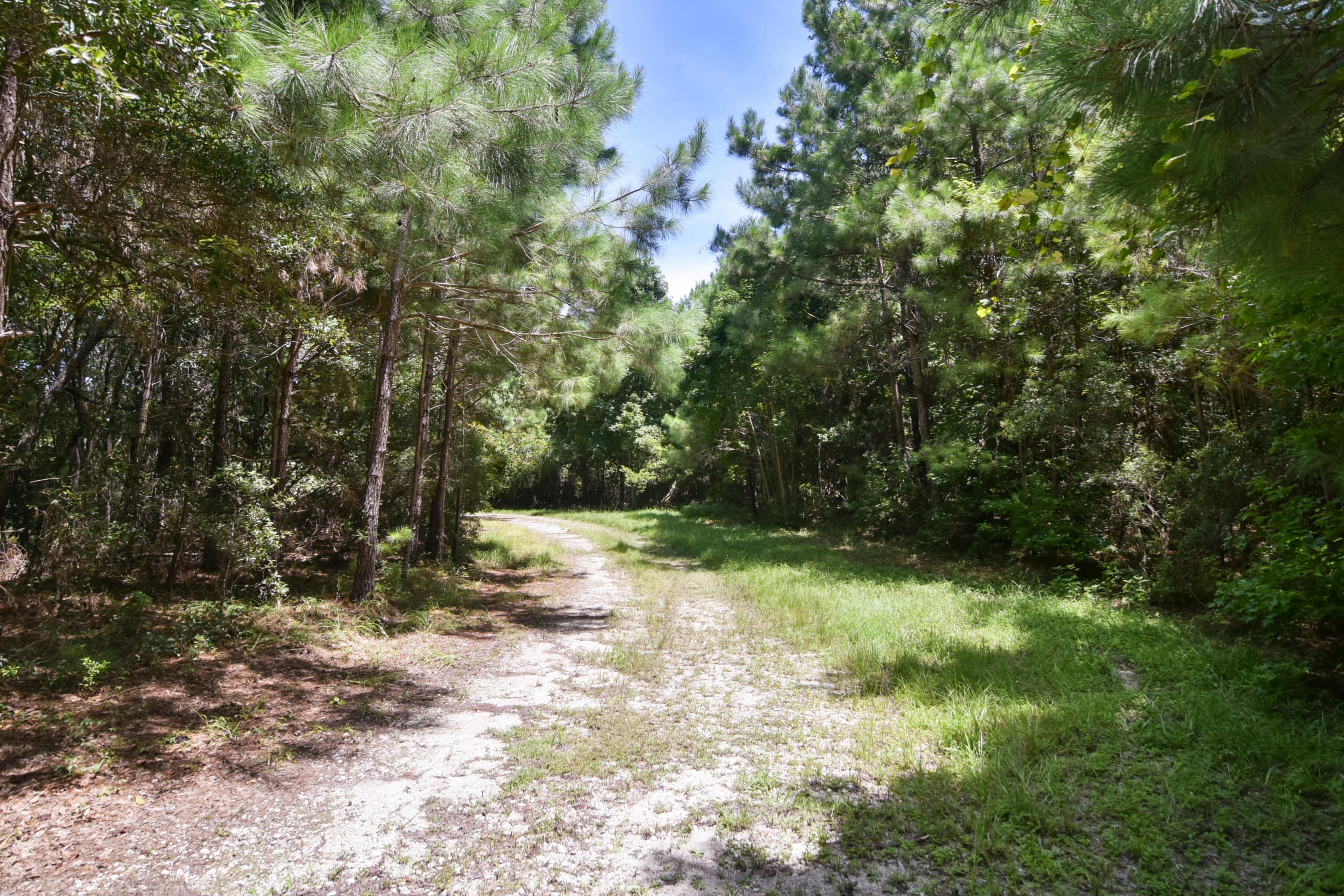 None Lots For Sale - 2630 Bryans Dairy, Johns Island, SC - 2