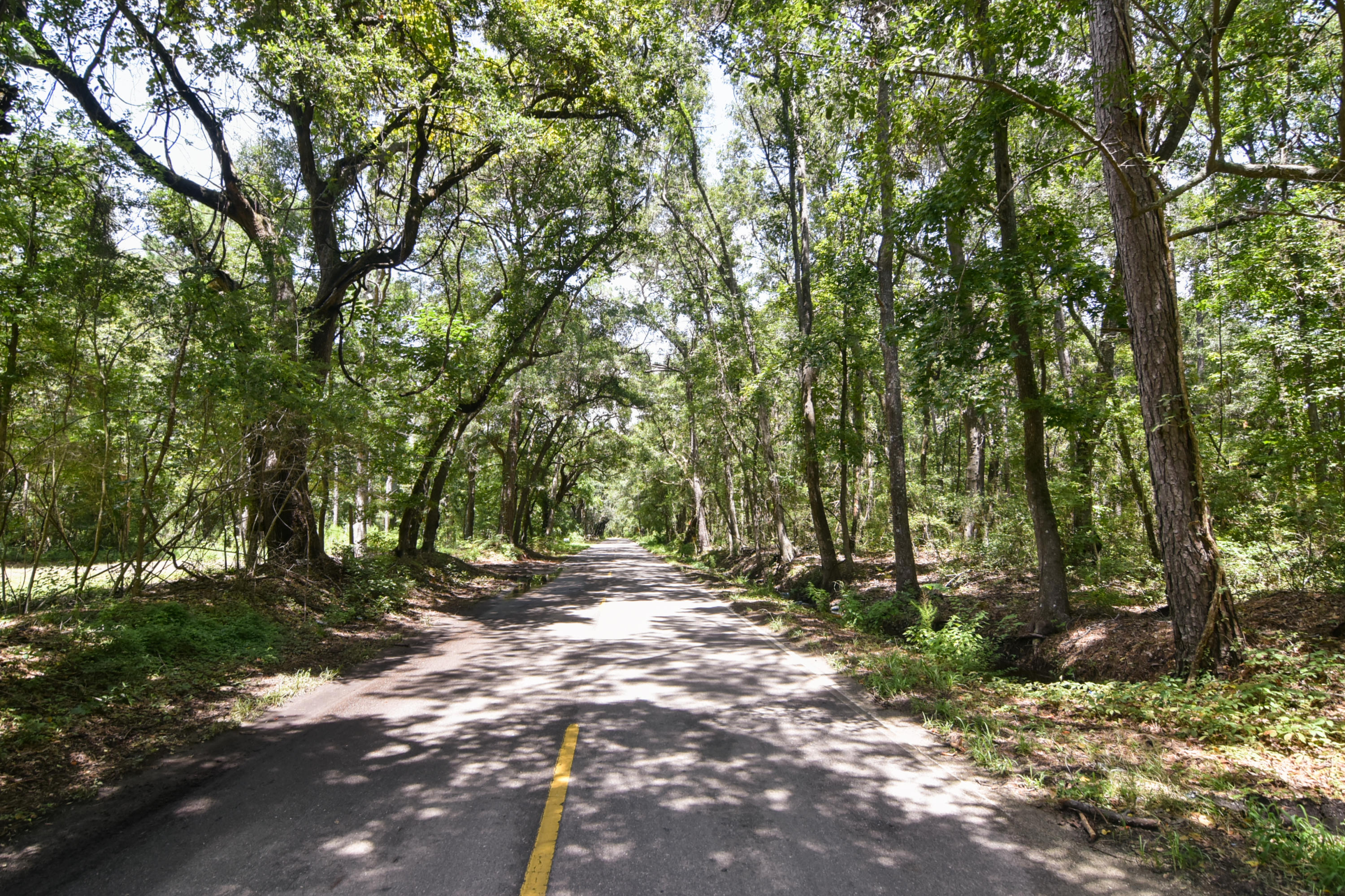 None Lots For Sale - 2630 Bryans Dairy, Johns Island, SC - 1