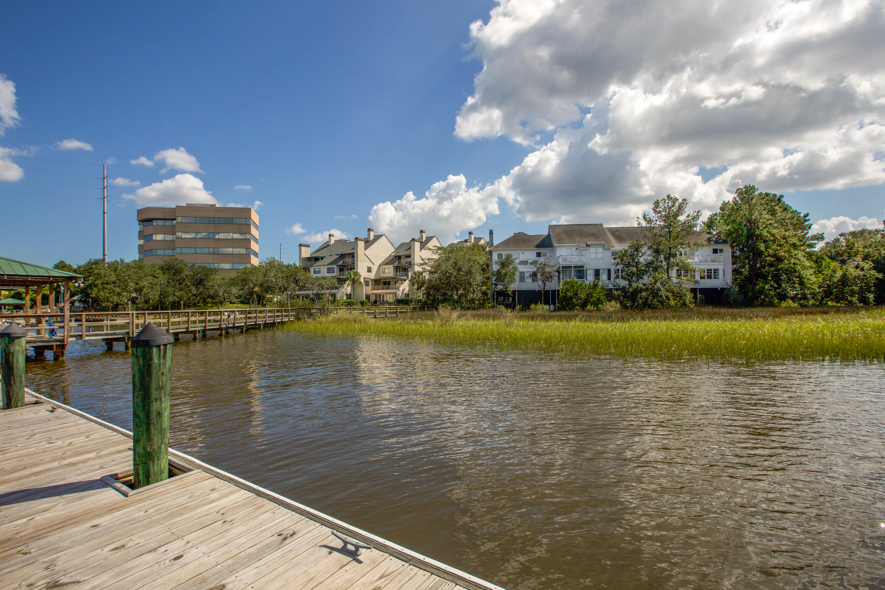 Wappoo Landing Homes For Sale - 125 Wappoo Landing, Charleston, SC - 32