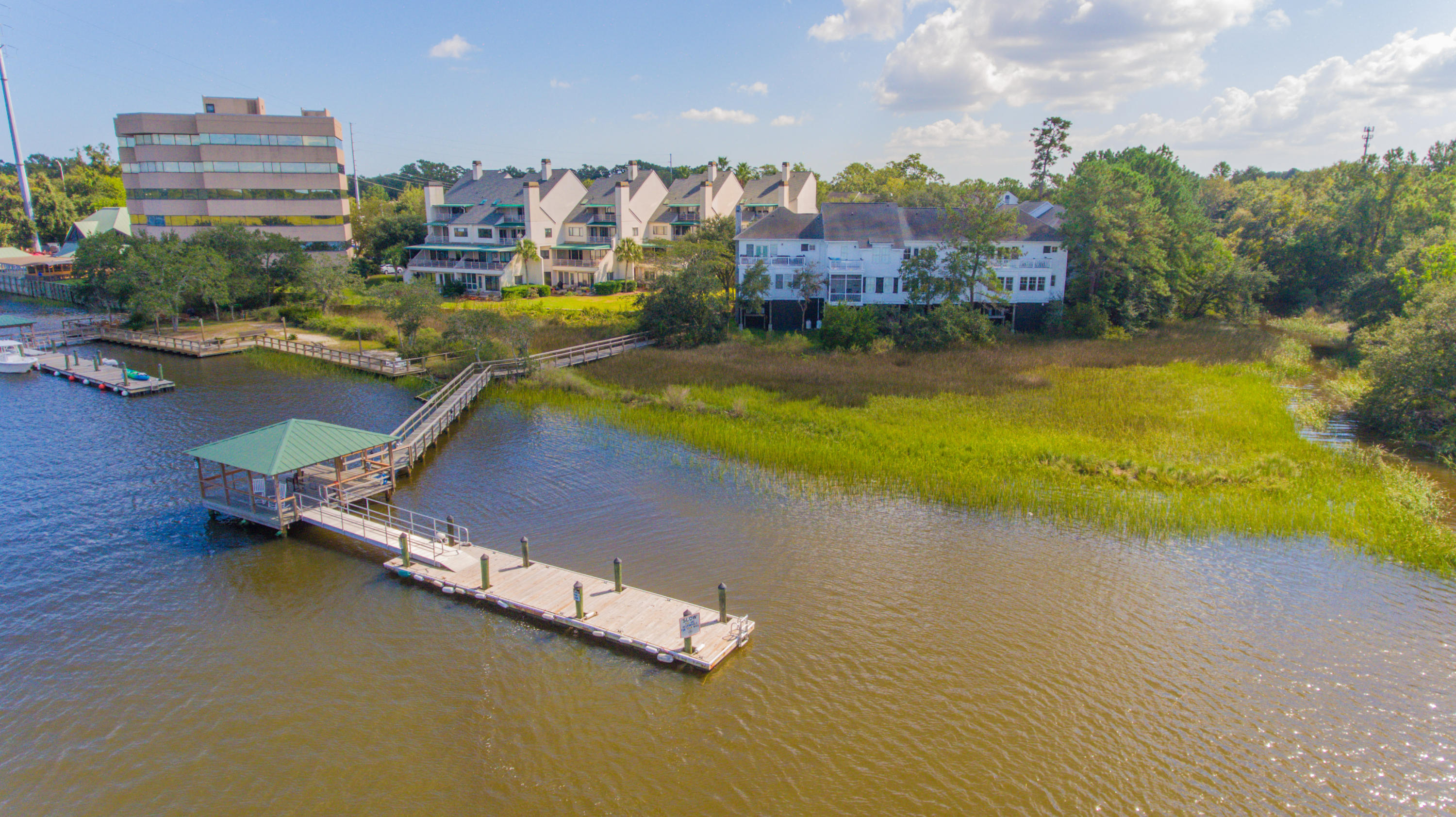 Wappoo Landing Homes For Sale - 125 Wappoo Landing, Charleston, SC - 38
