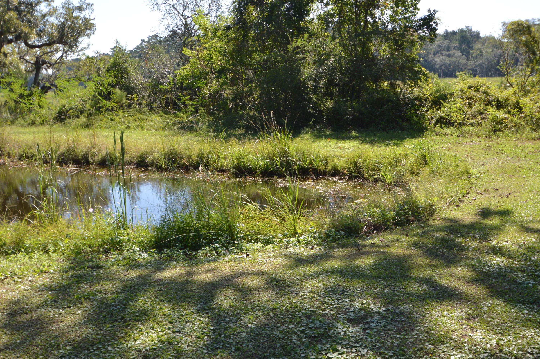 Locust Grove Homes For Sale - 2059 Bentz, Wadmalaw Island, SC - 63
