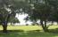 Beautiful oaks at entrance to lot