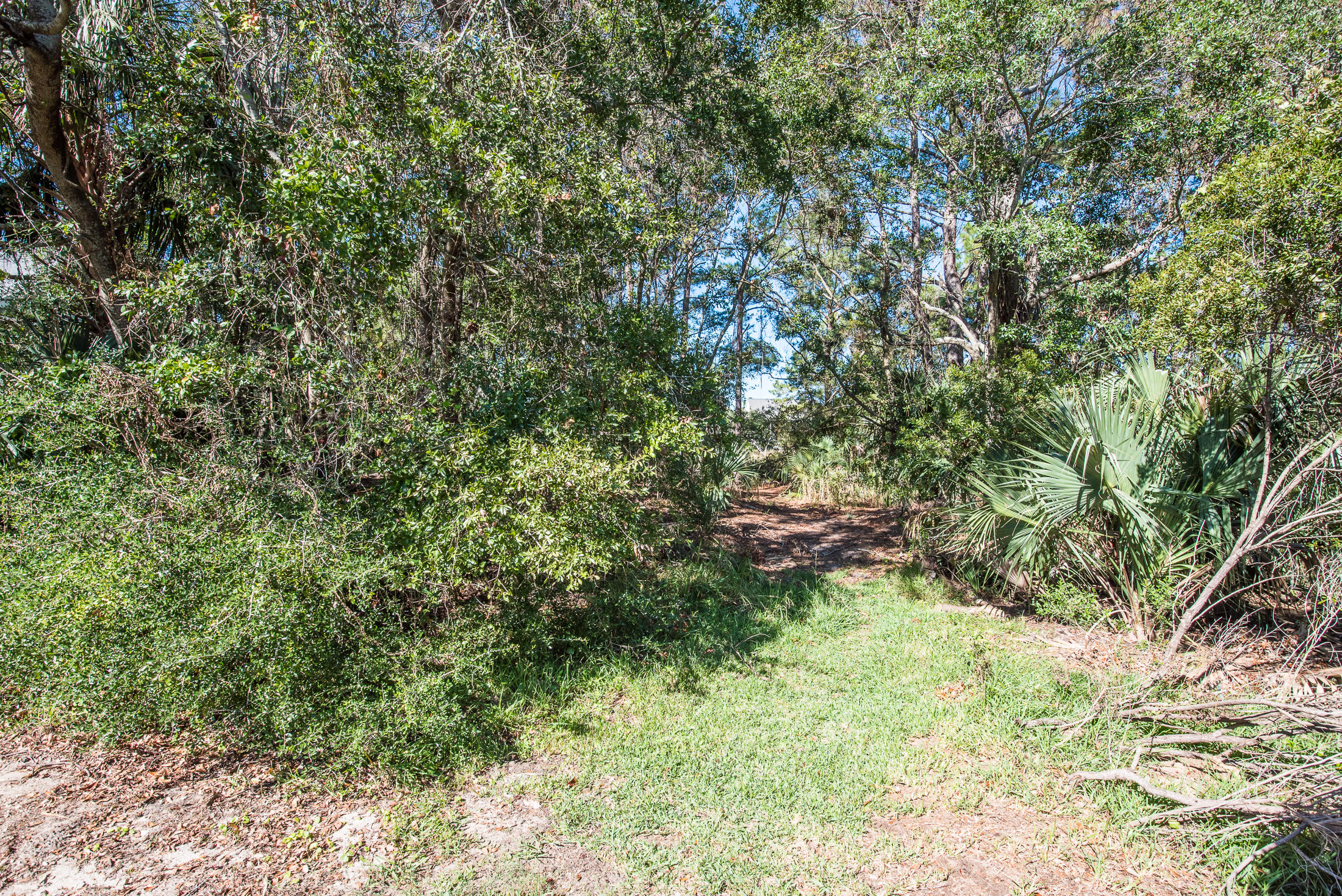 Wild Dunes Lots For Sale - 6823 Back Bay, Isle of Palms, SC - 1