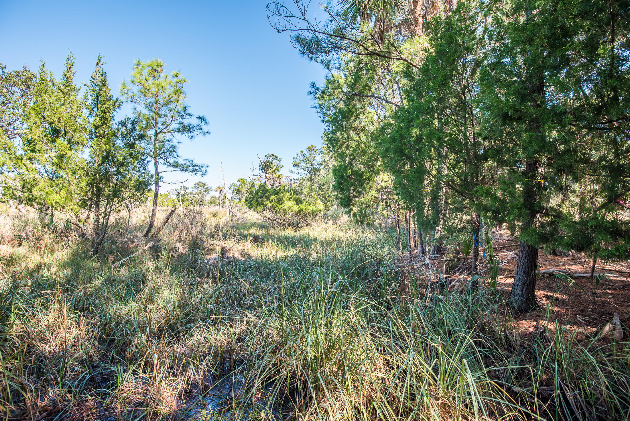 Wild Dunes Lots For Sale - 6823 Back Bay, Isle of Palms, SC - 16