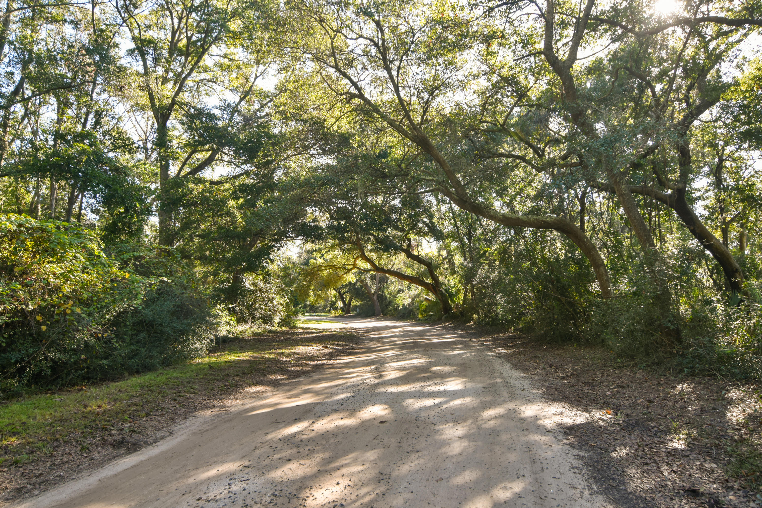 Cherry Point Road Wadmalaw Island, SC 29487