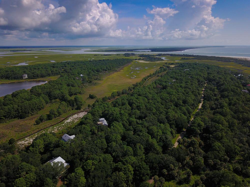 Dewees Island Homes For Sale - 320 Pelican Flight, Dewees Island, SC - 0