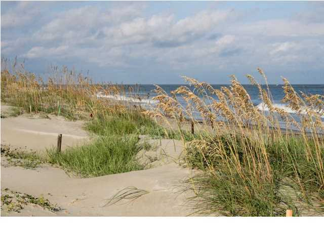 Dewees Island Lots For Sale - 307 Pelican Flight, Dewees Island, SC - 4