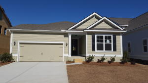438 Turnstone Street, Mount Pleasant, SC 29464