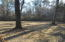 Huge fenced-in back yard