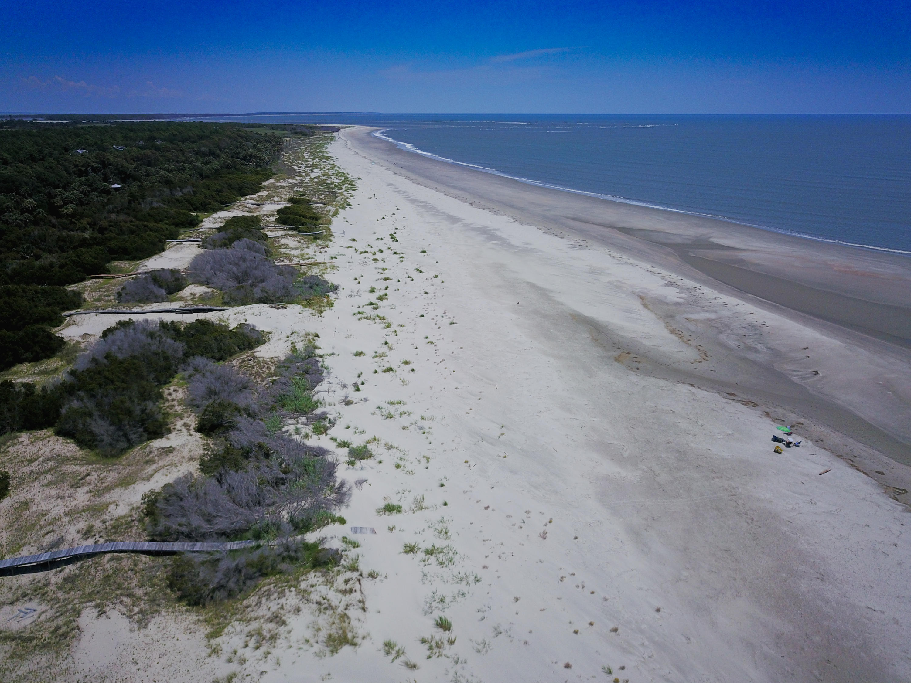 None Lots For Sale - 275 Pelican Flight, Dewees Island, SC - 4