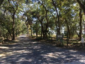 Kiawah River Estates Homes For Sale - 2886 Maritime Forest, Johns Island, SC - 1