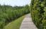lake walking trail
