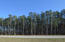 6185 Highway 17, Awendaw, SC 29429