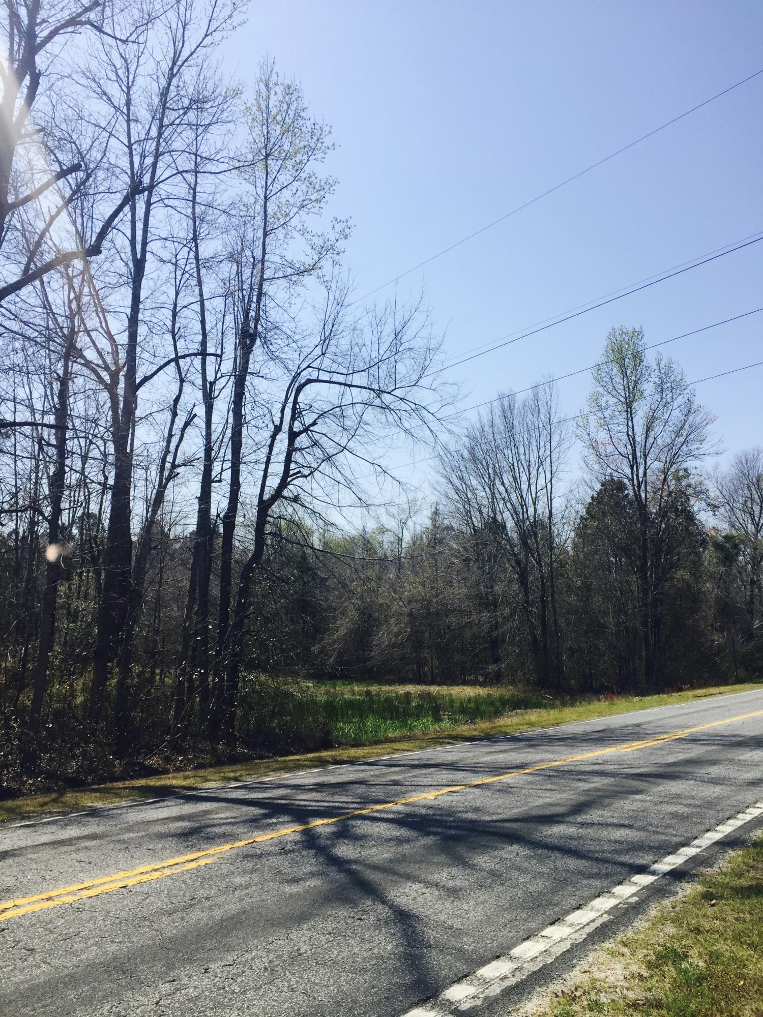 Augusta Highway Smoaks, SC 29481