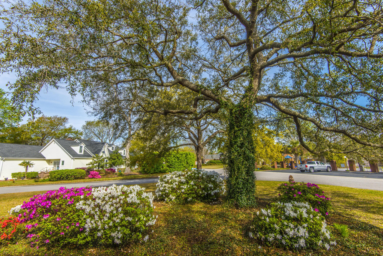 Hidden Lakes Homes For Sale - 1337 Overcreek, Mount Pleasant, SC - 32