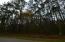 9970 Alert Road, McClellanville, SC 29458