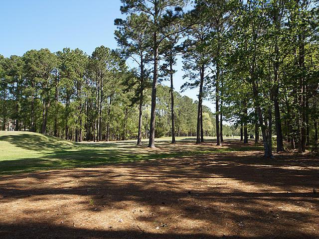 3672 Colonel Vanderhorst Circle Mount Pleasant, SC 29466