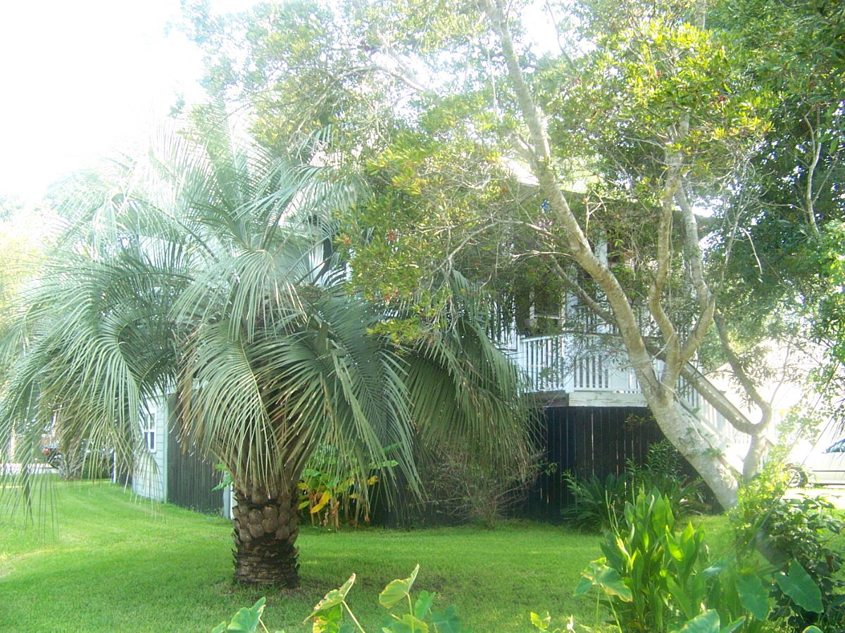 2901 Hartnett Boulevard Isle Of Palms, SC 29451