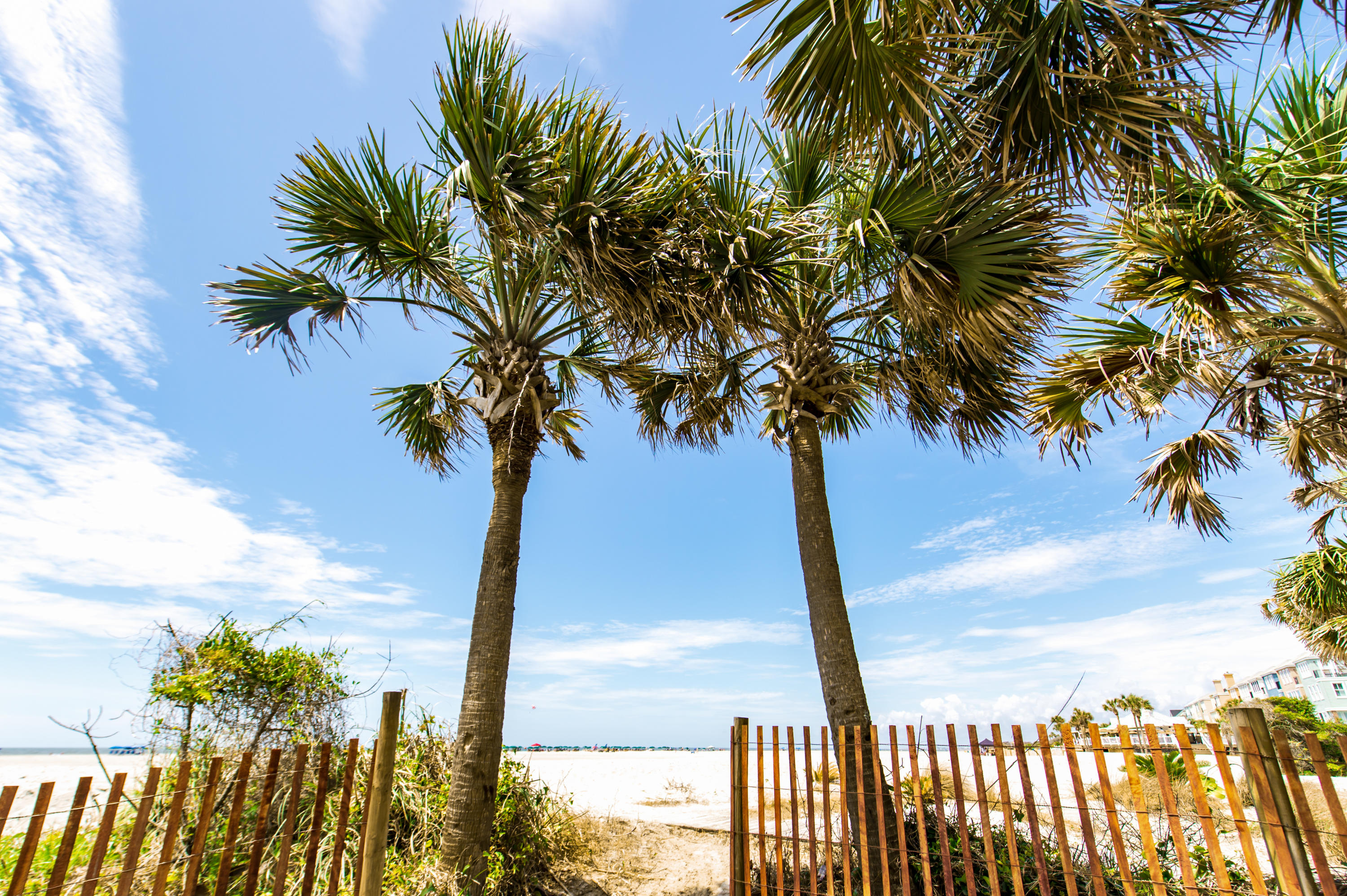 Wild Dunes Homes For Sale - 7 Seagrove, Isle of Palms, SC - 4