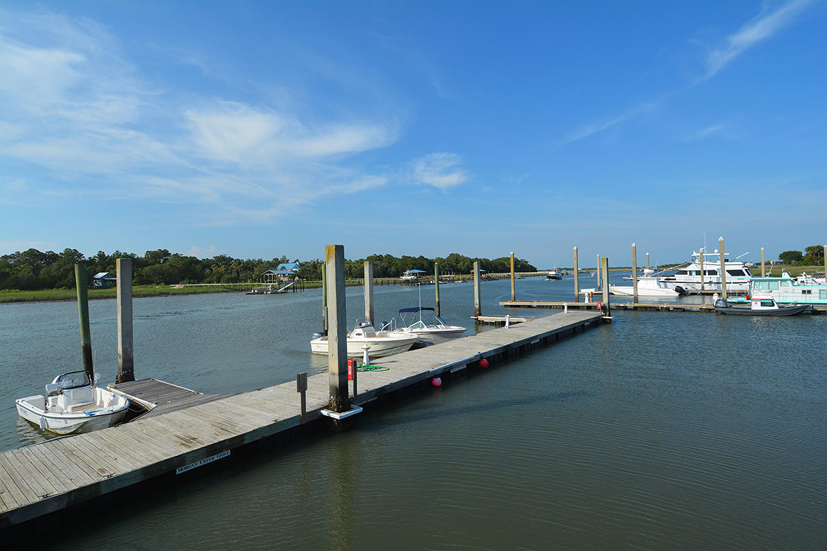 None Lots For Sale - 11 Chapman, Isle of Palms, SC - 13
