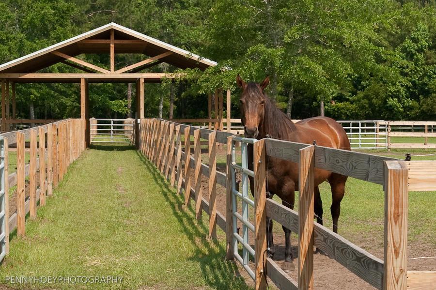 MLS# 18008483 | 211 Sea Horse Lane Huger SC | Huger subdivision