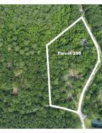 0 Pawlett Blake Lane, Parcel 29b, Wadmalaw Island, SC 29487