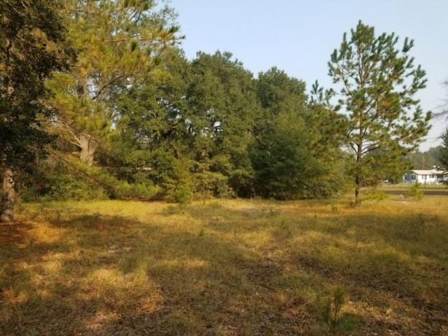 Orangeburg Road Summerville, SC 29483
