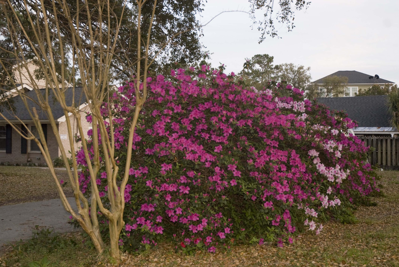 Lighthouse Point Homes For Sale - 615 Schooner, Charleston, SC - 54