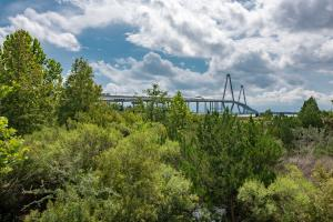 Ravenel Bridge View
