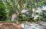 355 Spoonbill Lane, Mount Pleasant, SC 29464