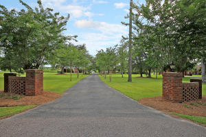 241 SPOTTED OWL LANE, MONCKS CORNER, SC 29461  Photo 3