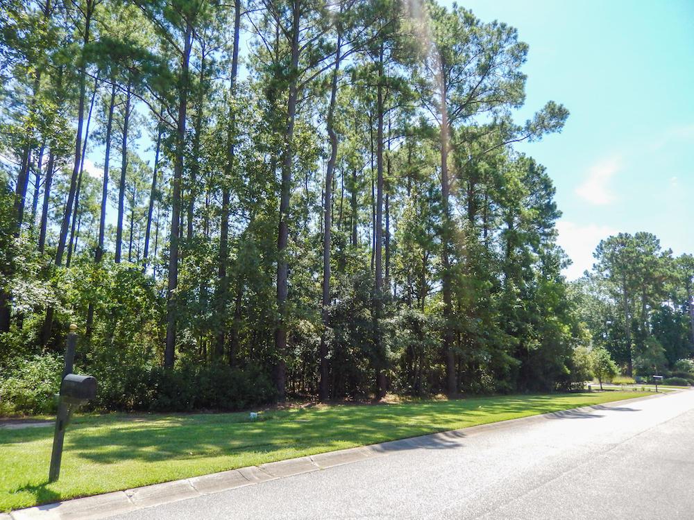 2372 Darts Cove Way Mount Pleasant, SC 29466
