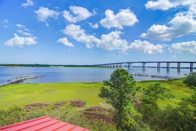 Daniel Island Park Homes For Sale - 134 Fairbanks Oak, Charleston, SC - 10