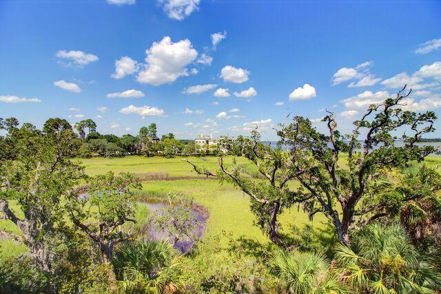 Daniel Island Park Homes For Sale - 134 Fairbanks Oak, Charleston, SC - 36