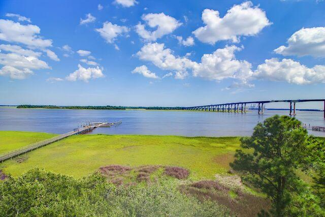Daniel Island Park Homes For Sale - 134 Fairbanks Oak, Charleston, SC - 7